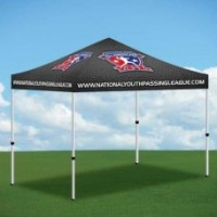 Bronze 5 Ft x 5 Ft Promo-Tent         ****CLICK for more INFO***